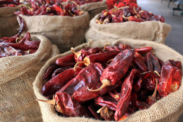 Dried red chile pods for sale in Hatch, New Mexico's chile capital.